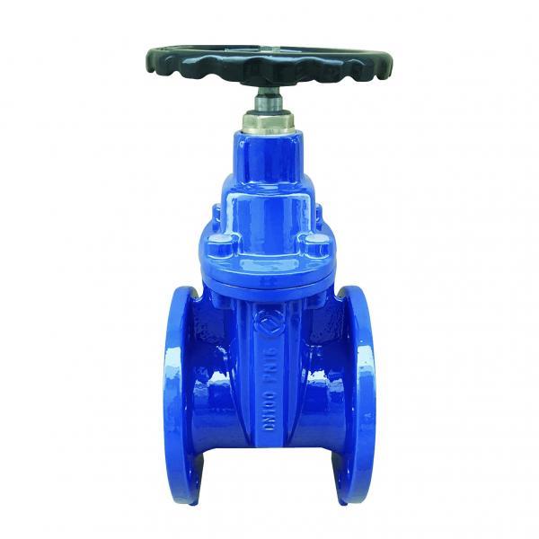Rexroth 4WMM6E.J.H.5X/F check valve #1 image