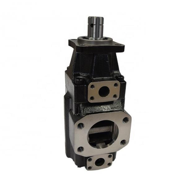 DENISON T6ED-052-038-1R00-C100 vane pump #1 image