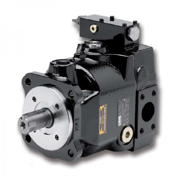 PAKER YB1-25/25 Piston Pump #2 image